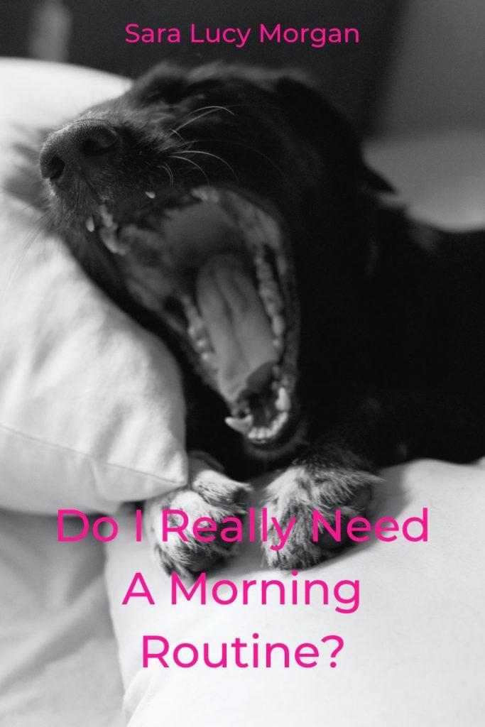 Do I really need a morning routine? - Dog yawning.
