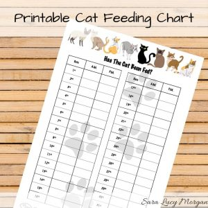 Monthly printable cat feed chart
