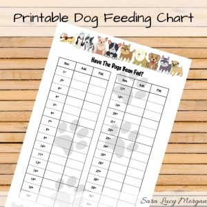 Monthly Printable Dog Feeding Chart