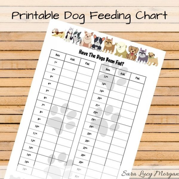 Monthly Printable Dog Feeding Chart